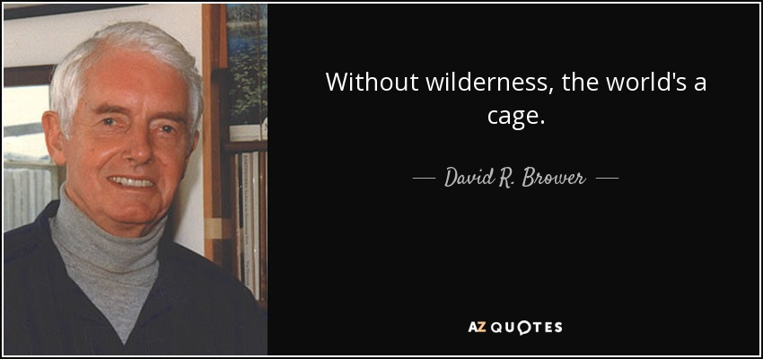 Without wilderness, the world's a cage. - David R. Brower