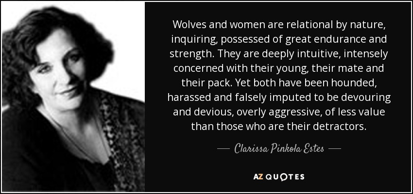 Wolves and women are relational by nature, inquiring, possessed of great endurance and strength. They are deeply intuitive, intensely concerned with their young, their mate and their pack. Yet both have been hounded, harassed and falsely imputed to be devouring and devious, overly aggressive, of less value than those who are their detractors. - Clarissa Pinkola Estes