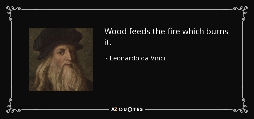 Wood feeds the fire which burns it. - Leonardo da Vinci