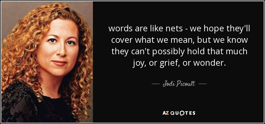 words are like nets - we hope they'll cover what we mean, but we know they can't possibly hold that much joy, or grief, or wonder. - Jodi Picoult