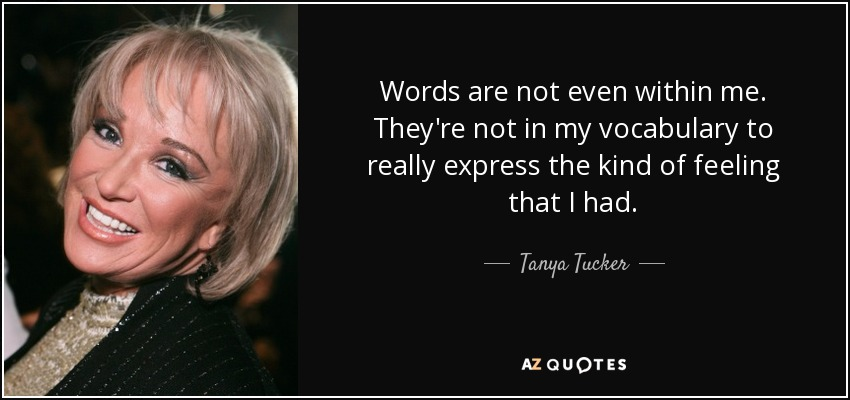 Words are not even within me. They're not in my vocabulary to really express the kind of feeling that I had. - Tanya Tucker