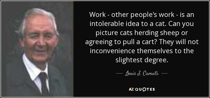 Work - other people's work - is an intolerable idea to a cat. Can you picture cats herding sheep or agreeing to pull a cart? They will not inconvenience themselves to the slightest degree. - Louis J. Camuti