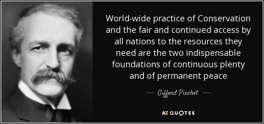 World-wide practice of Conservation and the fair and continued access by all nations to the resources they need are the two indispensable foundations of continuous plenty and of permanent peace - Gifford Pinchot