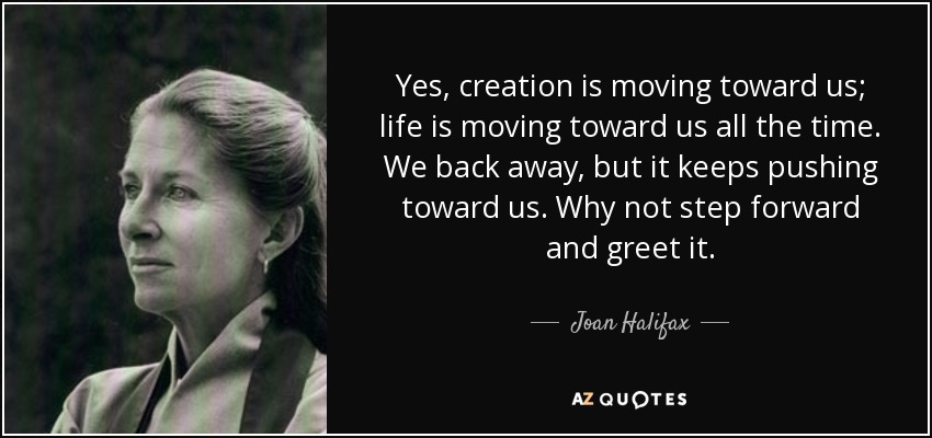Yes, creation is moving toward us; life is moving toward us all the time. We back away, but it keeps pushing toward us. Why not step forward and greet it. - Joan Halifax