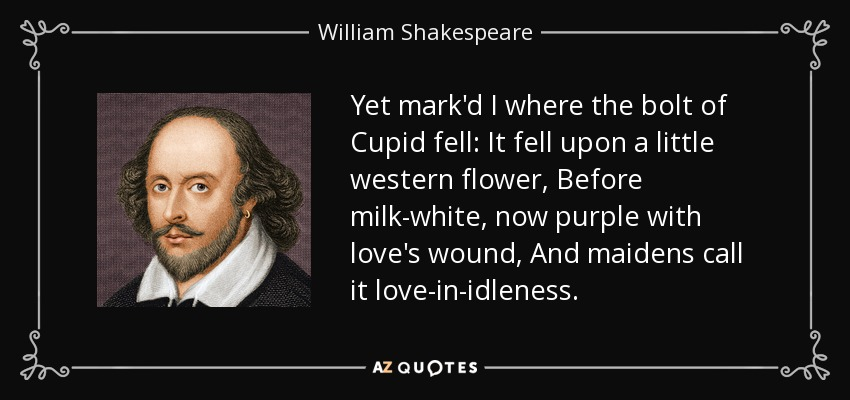 Yet mark'd I where the bolt of Cupid fell: It fell upon a little western flower, Before milk-white, now purple with love's wound, And maidens call it love-in-idleness. - William Shakespeare