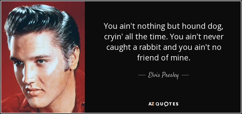 You ain't nothing but hound dog, cryin' all the time. You ain't never caught a rabbit and you ain't no friend of mine. - Elvis Presley