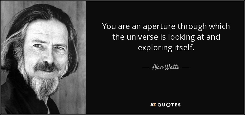 You are an aperture through which the universe is looking at and exploring itself. - Alan Watts