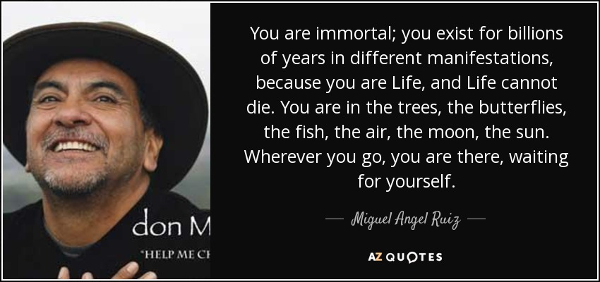 You are immortal; you exist for billions of years in different manifestations, because you are Life, and Life cannot die. You are in the trees, the butterflies, the fish, the air, the moon, the sun. Wherever you go, you are there, waiting for yourself. - Miguel Angel Ruiz