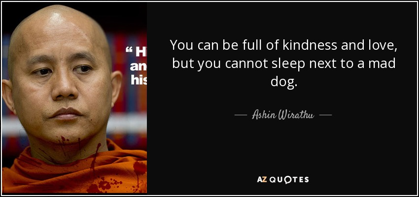 You can be full of kindness and love, but you cannot sleep next to a mad dog. - Ashin Wirathu