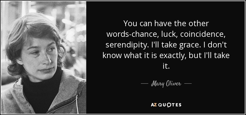 You can have the other words-chance, luck, coincidence, serendipity. I'll take grace. I don't know what it is exactly, but I'll take it. - Mary Oliver