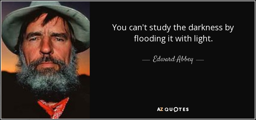 You can't study the darkness by flooding it with light. - Edward Abbey