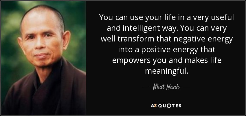 You can use your life in a very useful and intelligent way. You can very well transform that negative energy into a positive energy that empowers you and makes life meaningful. - Nhat Hanh