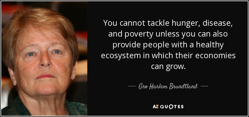 You cannot tackle hunger, disease, and poverty unless you can also provide people with a healthy ecosystem in which their economies can grow. - Gro Harlem Brundtland