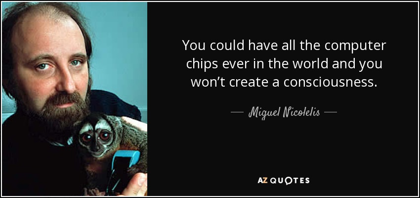You could have all the computer chips ever in the world and you won't create a consciousness. - Miguel Nicolelis