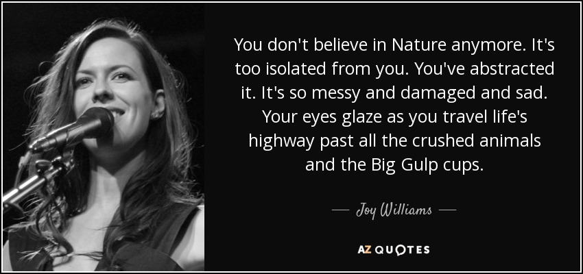 You don't believe in Nature anymore. It's too isolated from you. You've abstracted it. It's so messy and damaged and sad. Your eyes glaze as you travel life's highway past all the crushed animals and the Big Gulp cups. - Joy Williams