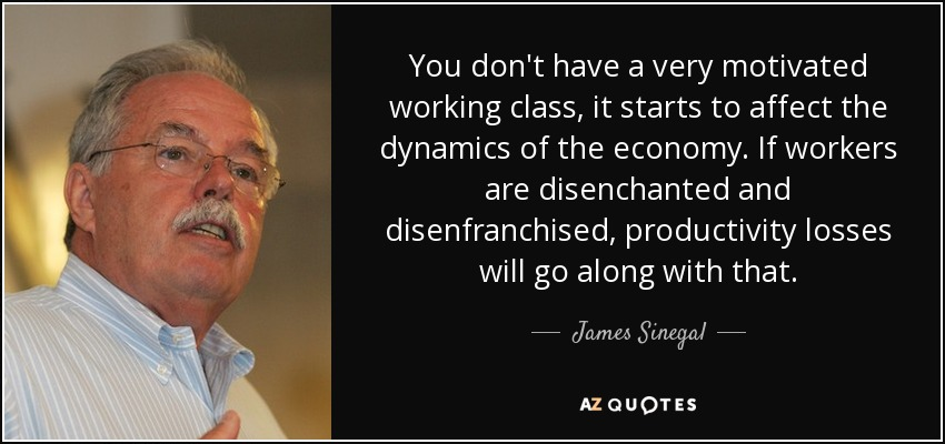 You don't have a very motivated working class, it starts to affect the dynamics of the economy. If workers are disenchanted and disenfranchised, productivity losses will go along with that. - James Sinegal