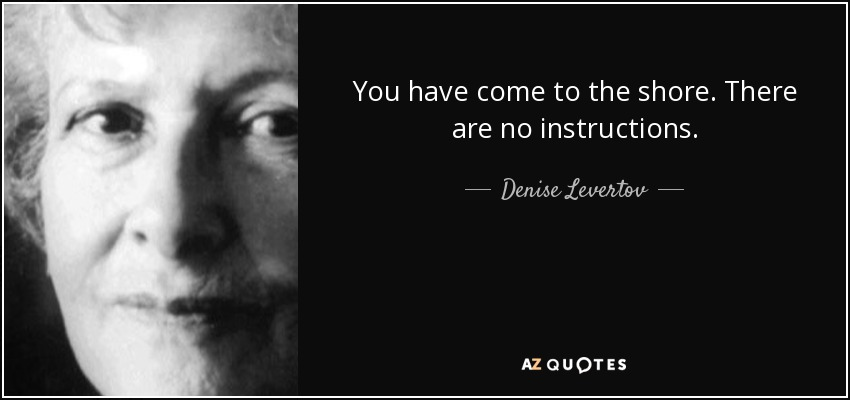 You have come to the shore. There are no instructions. - Denise Levertov