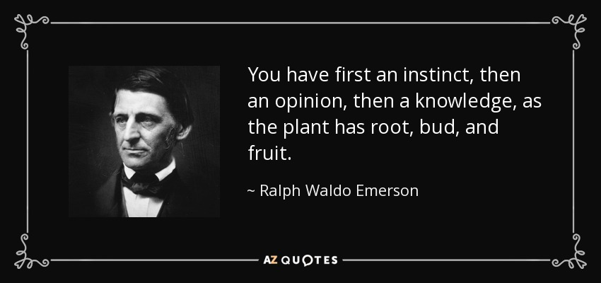 You have first an instinct, then an opinion, then a knowledge, as the plant has root, bud, and fruit. - Ralph Waldo Emerson