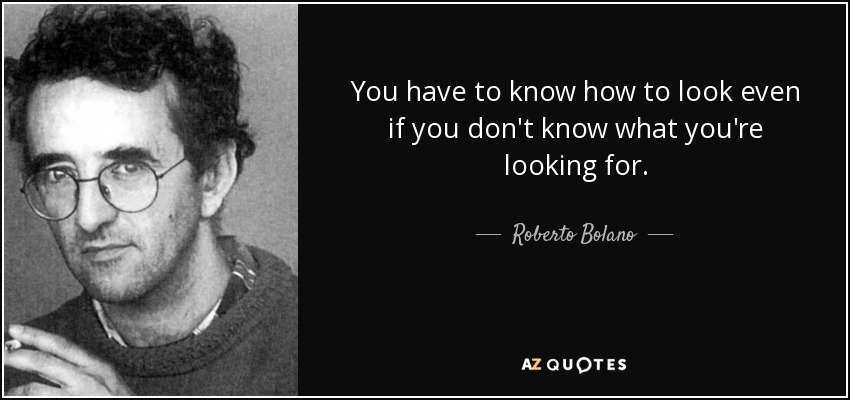 You have to know how to look even if you don't know what you're looking for. - Roberto Bolano