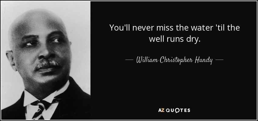 You'll never miss the water 'til the well runs dry. - William Christopher Handy