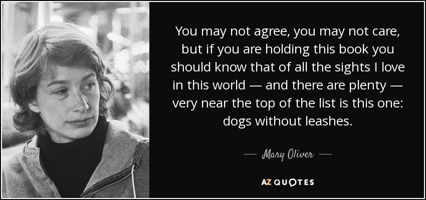 You may not agree, you may not care, but if you are holding this book you should know that of all the sights I love in this world — and there are plenty — very near the top of the list is this one: dogs without leashes. - Mary Oliver