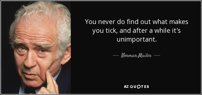 You never do find out what makes you tick, and after a while it's unimportant. - Norman Mailer