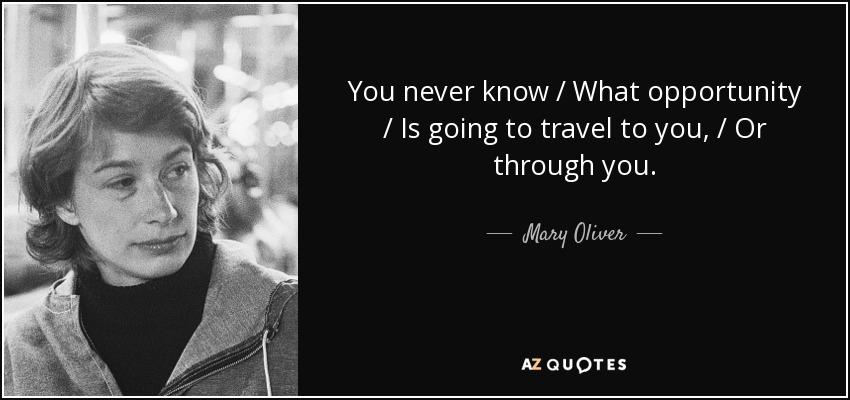 You never know / What opportunity / Is going to travel to you, / Or through you. - Mary Oliver