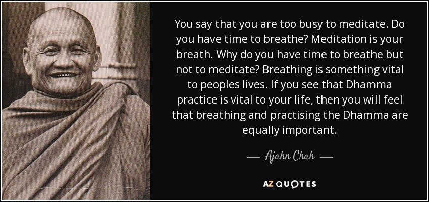 You say that you are too busy to meditate. Do you have time to breathe? Meditation is your breath. Why do you have time to breathe but not to meditate? Breathing is something vital to peoples lives. If you see that Dhamma practice is vital to your life, then you will feel that breathing and practising the Dhamma are equally important. - Ajahn Chah