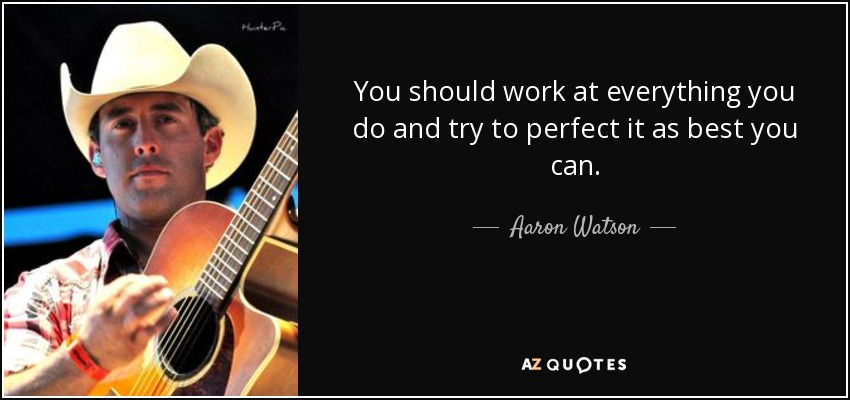 You should work at everything you do and try to perfect it as best you can. - Aaron Watson