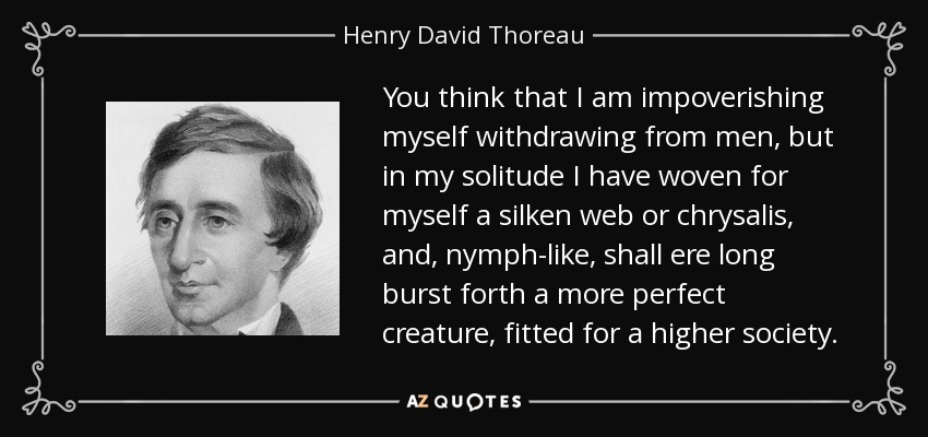 You think that I am impoverishing myself withdrawing from men, but in my solitude I have woven for myself a silken web or chrysalis, and, nymph-like, shall ere long burst forth a more perfect creature, fitted for a higher society. - Henry David Thoreau