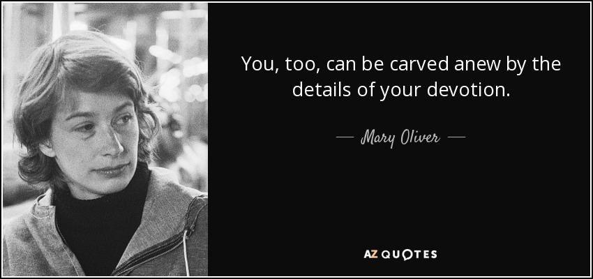 You, too, can be carved anew by the details of your devotion. - Mary Oliver