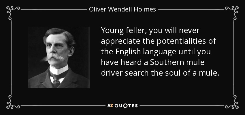 Young feller, you will never appreciate the potentialities of the English language until you have heard a Southern mule driver search the soul of a mule. - Oliver Wendell Holmes, Jr.