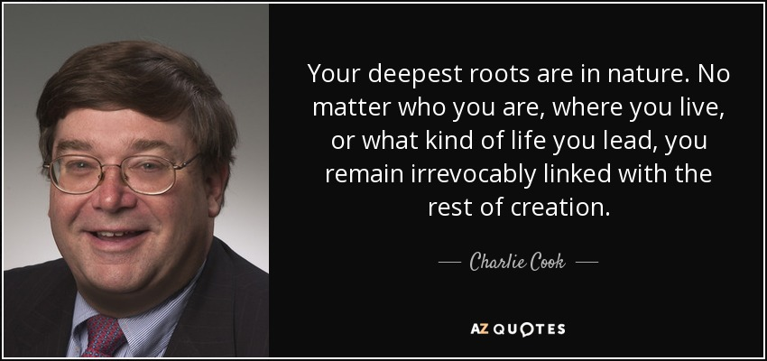 Your deepest roots are in nature. No matter who you are, where you live, or what kind of life you lead, you remain irrevocably linked with the rest of creation. - Charlie Cook