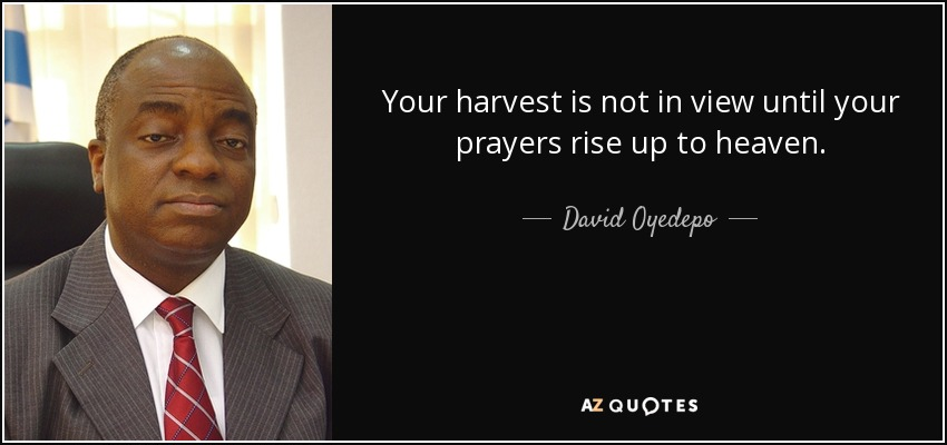 Your harvest is not in view until your prayers rise up to heaven. - David Oyedepo