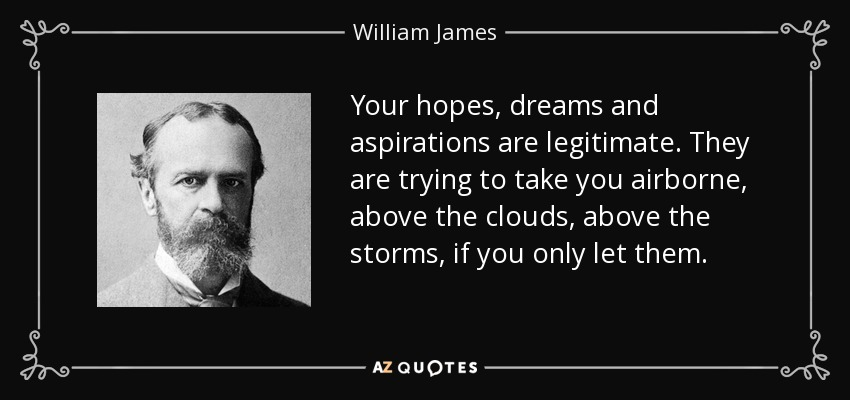 Your hopes, dreams and aspirations are legitimate. They are trying to take you airborne, above the clouds, above the storms, if you only let them. - William James