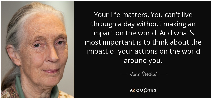Your life matters. You can't live through a day without making an impact on the world. And what's most important is to think about the impact of your actions on the world around you. - Jane Goodall
