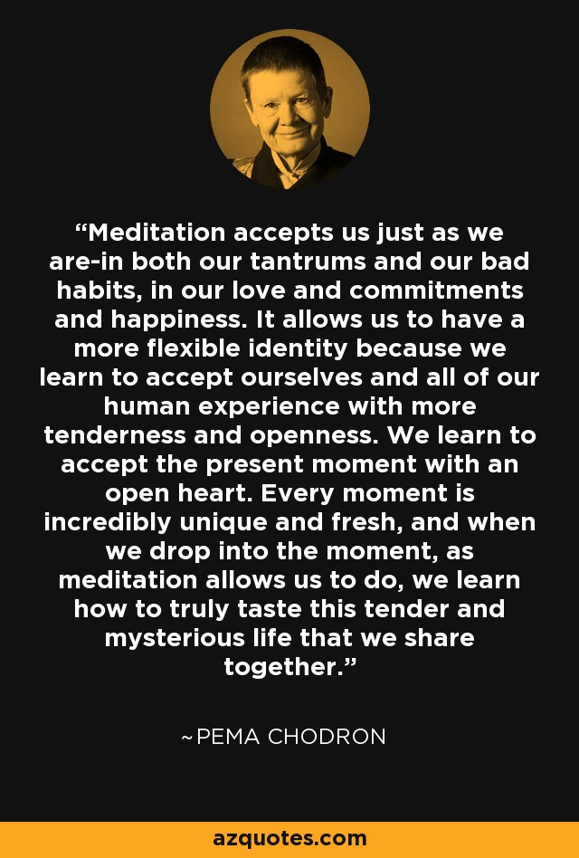 Meditation accepts us just as we are-in both our tantrums and our bad habits, in our love and commitments and happiness. It allows us to have a more flexible identity because we learn to accept ourselves and all of our human experience with more tenderness and openness. We learn to accept the present moment with an open heart. Every moment is incredibly unique and fresh, and when we drop into the moment, as meditation allows us to do, we learn how to truly taste this tender and mysterious life that we share together. - Pema Chodron