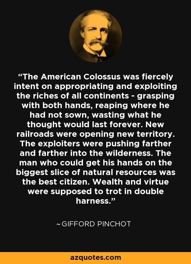 The American Colossus was fiercely intent on appropriating and exploiting the riches of all continents - grasping with both hands, reaping where he had not sown, wasting what he thought would last forever. New railroads were opening new territory. The exploiters were pushing farther and farther into the wilderness. The man who could get his hands on the biggest slice of natural resources was the best citizen. Wealth and virtue were supposed to trot in double harness. - Gifford Pinchot