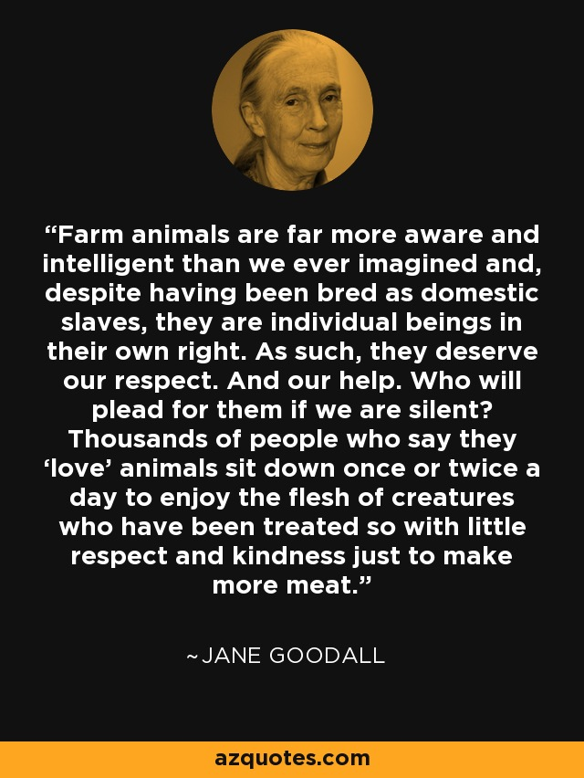 Jane Goodall Quotes | Jane Goodall Quote Farm Animals Are Far More Aware And Intelligent
