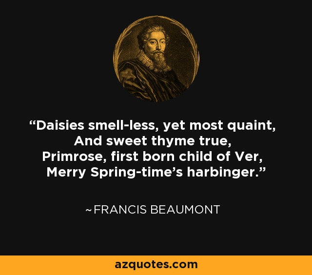 Daisies smell-less, yet most quaint, And sweet thyme true, Primrose, first born child of Ver, Merry Spring-time's harbinger. - Francis Beaumont