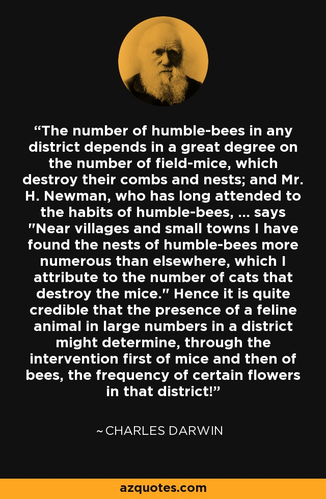 The number of humble-bees in any district depends in a great degree on the number of field-mice, which destroy their combs and nests; and Mr. H. Newman, who has long attended to the habits of humble-bees, ... says