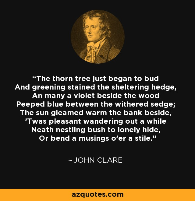 The thorn tree just began to bud And greening stained the sheltering hedge, An many a violet beside the wood Peeped blue between the withered sedge; The sun gleamed warm the bank beside, 'Twas pleasant wandering out a while Neath nestling bush to lonely hide, Or bend a musings o'er a stile. - John Clare