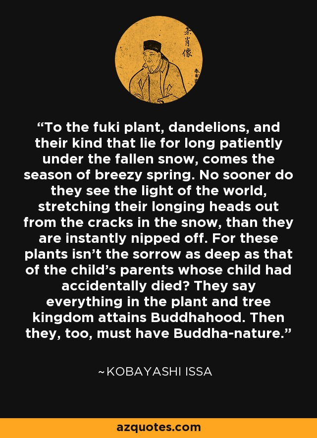 To the fuki plant, dandelions, and their kind that lie for long patiently under the fallen snow, comes the season of breezy spring. No sooner do they see the light of the world, stretching their longing heads out from the cracks in the snow, than they are instantly nipped off. For these plants isn't the sorrow as deep as that of the child's parents whose child had accidentally died? They say everything in the plant and tree kingdom attains Buddhahood. Then they, too, must have Buddha-nature. - Kobayashi Issa