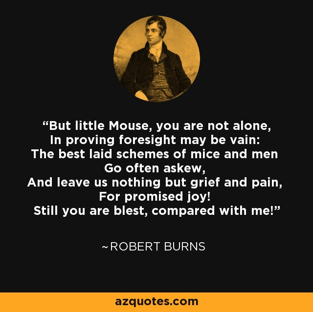 But little Mouse, you are not alone, In proving foresight may be vain: The best laid schemes of mice and men Go often askew, And leave us nothing but grief and pain, For promised joy! Still you are blest, compared with me! - Robert Burns