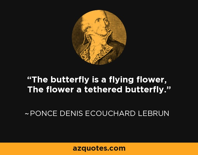 The butterfly is a flying flower, The flower a tethered butterfly. - Ponce Denis Ecouchard Lebrun