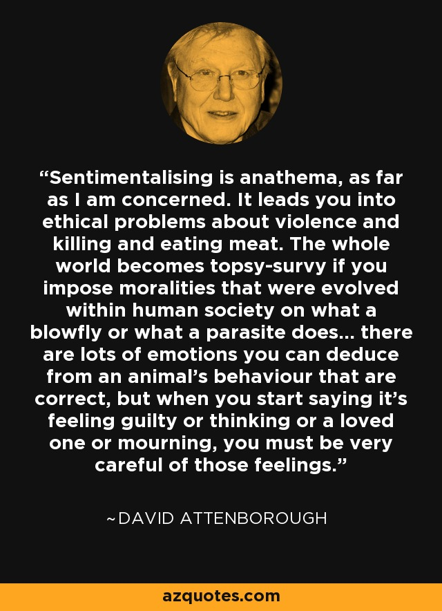 Sentimentalising is anathema, as far as I am concerned. It leads you into ethical problems about violence and killing and eating meat. The whole world becomes topsy-survy if you impose moralities that were evolved within human society on what a blowfly or what a parasite does... there are lots of emotions you can deduce from an animal's behaviour that are correct, but when you start saying it's feeling guilty or thinking or a loved one or mourning, you must be very careful of those feelings. - David Attenborough