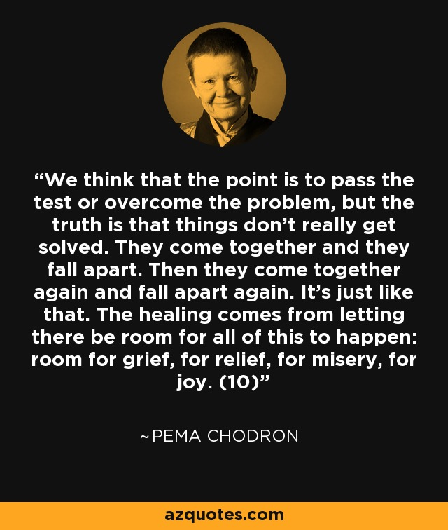 Pema Chodron Quote We Think That The Point Is To Pass The Test