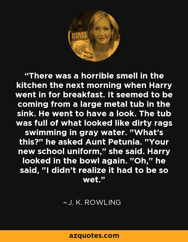 There was a horrible smell in the kitchen the next morning when Harry went in for breakfast. It seemed to be coming from a large metal tub in the sink. He went to have a look. The tub was full of what looked like dirty rags swimming in gray water.