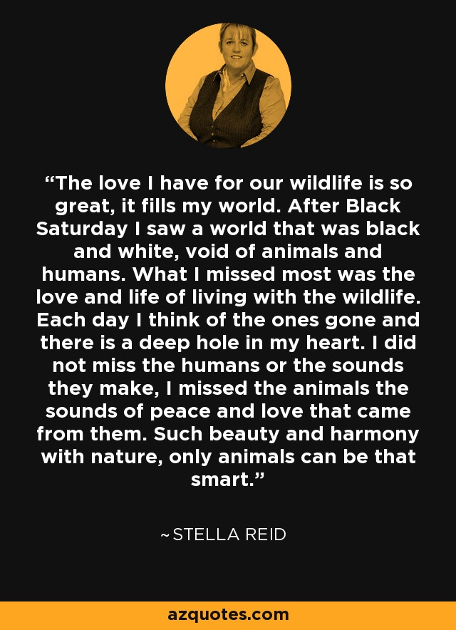 The love I have for our wildlife is so great, it fills my world. After Black Saturday I saw a world that was black and white, void of animals and humans. What I missed most was the love and life of living with the wildlife. Each day I think of the ones gone and there is a deep hole in my heart. I did not miss the humans or the sounds they make, I missed the animals the sounds of peace and love that came from them. Such beauty and harmony with nature, only animals can be that smart. - Stella Reid