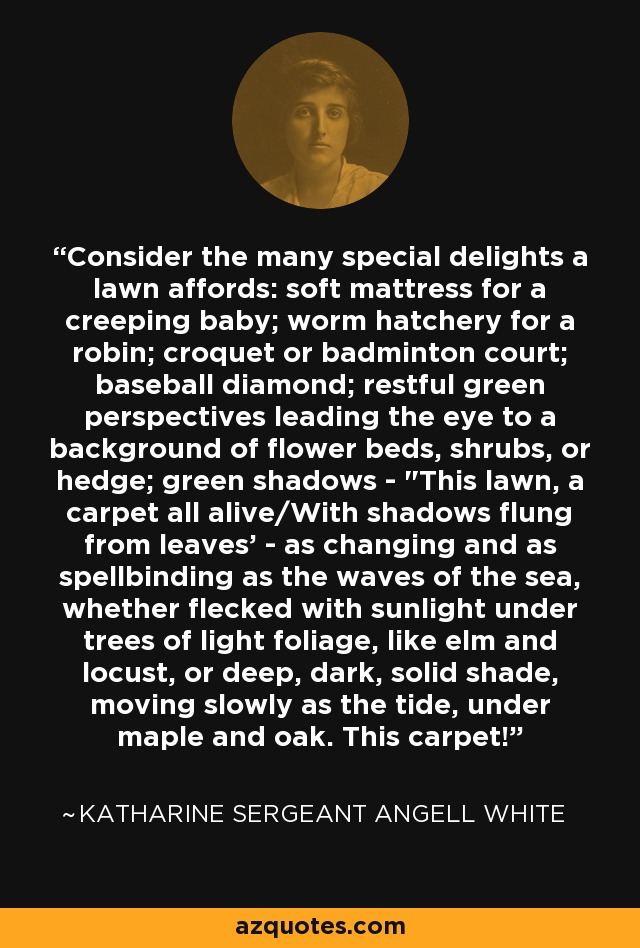 Consider the many special delights a lawn affords: soft mattress for a creeping baby; worm hatchery for a robin; croquet or badminton court; baseball diamond; restful green perspectives leading the eye to a background of flower beds, shrubs, or hedge; green shadows -